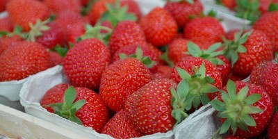 allergic reaction to strawberries